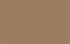 Светло-коричневый 1236